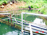 水質調査(排水処理)